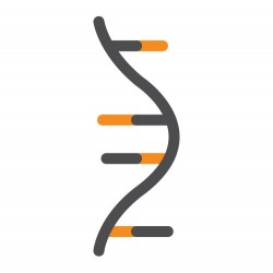ExtractNow™ RNA Mini Kit