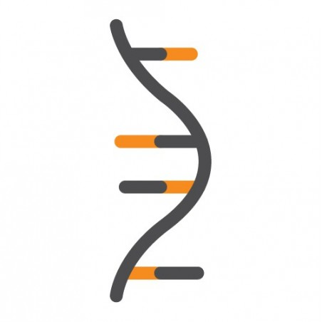 ExtractNow™ RNA Mini Kit