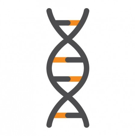 ExtractNow™ DNA Mini Kit